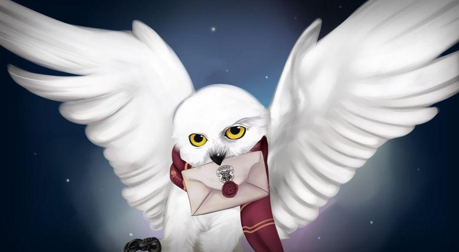 Harry Potter: Wizards Unite: письма Хедвиги