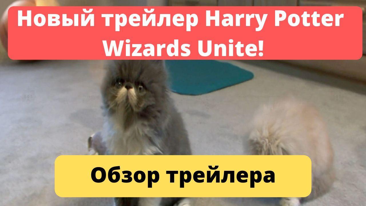 """Четвертый трейлер Wizards Unite - """"Золотой снитч""""!"""